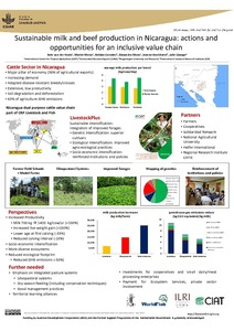 Sustainable milk and beef production in Nicaragua: actions and opportunities for an inclusive value chain
