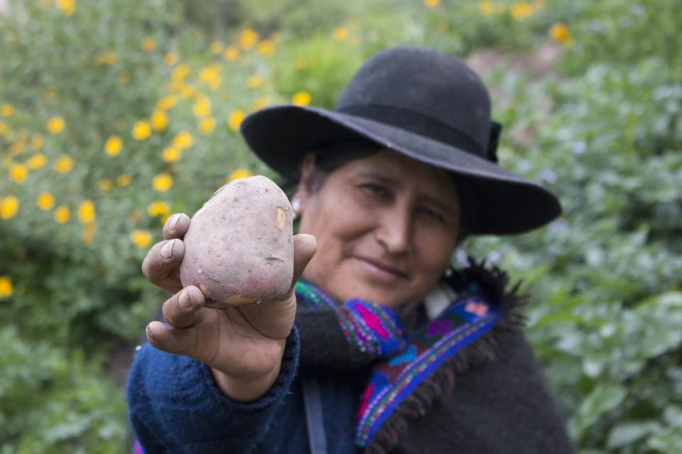 Photo of Peruvian woman w potato