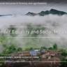 Gender equality and social inclusion in forestry and agroforestry video (image credit: CIFOR)