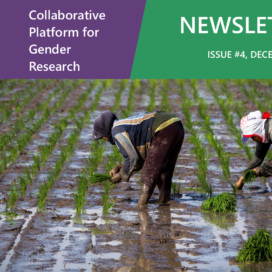 CGIAR Collaborative Platform for Gender Research - Newsletter #4