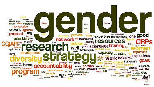 Gender data and methods (image credit: ILRI)
