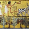 Gender relations in agriculture in ancient Egypte (photo credit: Shaheim Terry)