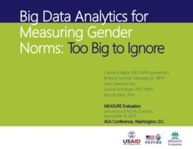 Big data and gender is the talk of town (image credit: Measure evaluation)
