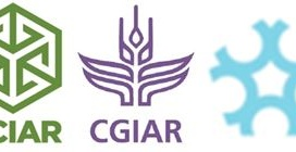 ACIAR, CGIAR Collaborative Platform for Gender Research and University of Canberra