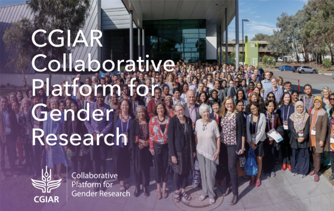 CGIAR Collaborative Platform for Gender Research - Reflecting on three years of CGIAR gender research