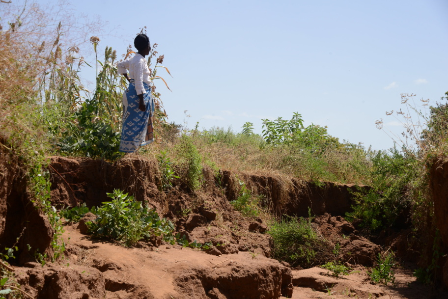 Pastor Grace Josphat viewing the gulley on her farm in Mwingi, Kenya. Photo: ICRAF.